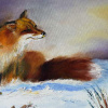 Fuchs im Winter